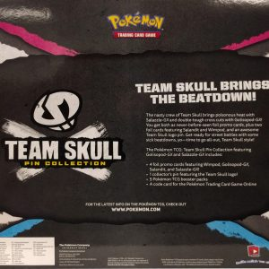 Team Skull Pin Collection Back